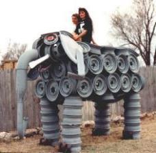 Elephant Diana And Angie